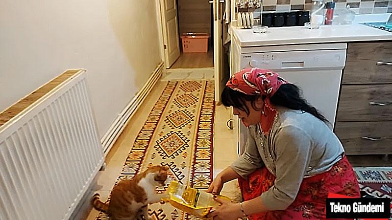 Okşan Büyük Kedi Osman